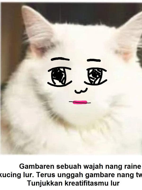 Gambar pada tubuh kucing (Sumber: Twitter/tupainguin)