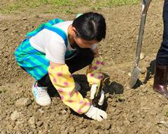園藝治療孩子的心