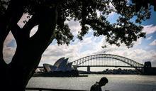 澳洲經濟成長3.3% 走出近30年首見衰退