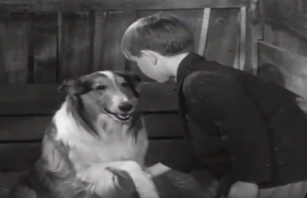 CBS All Access Fetches New 'Lassie,' 'George of the Jungle' and 'Mr Magoo' Animated Series