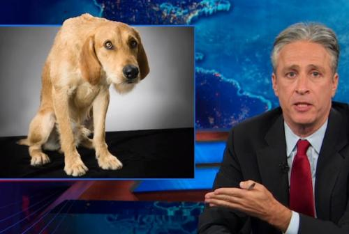 Jon Stewart to GOP: Own Government Shutdown, Don't Fart and Blame the Dog (Video)