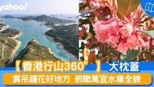 【行山路線】360度睇大枕蓋:賞吊鐘花好地方 俯瞰萬宜水庫全貌