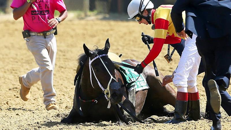 Congrats Gal is surrounded by jockey Trevor McCarthy and rescue workers after she appears to lose her balance and then falls down after the 8th race on Black-Eyed Susan Stakes Day on May 17, 2019 at Pimlico Race Course in Baltimore, MD. Jockey (Photo by Cliff Welch/Icon Sportswire via Getty Images)