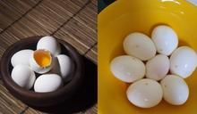 水煮蛋起鍋竟有黃點!內行人曝真相