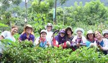 吉安打造部落鄉民農園