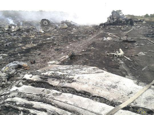 A general view shows part of the wreckage of Malaysia Airlines flight MH17 in the Donetsk region, near the Ukrainian border with Russia. - Reuters pic, July 17, 2014.