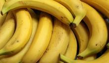 香蕉買回家超快變黑?神招可放一週