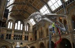 Warga lokal menikmati kesunyian yang langka di museum-museum London