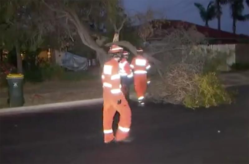 The SES responded to more than 80 calls across Adelaide
