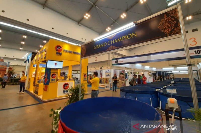 Kemenko maritim dan investasi pangkas regulasi usaha ikan hias for Regalasi mobili