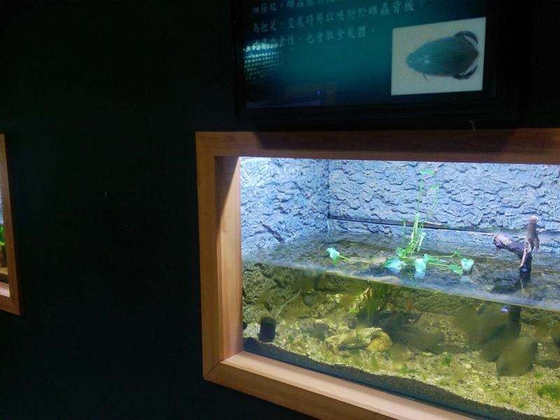 水生生態展示區