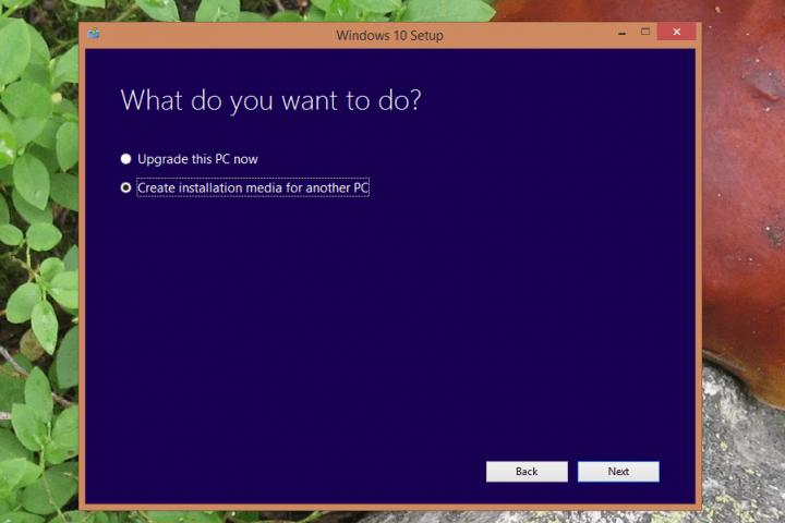 windows-10-tool-create-media
