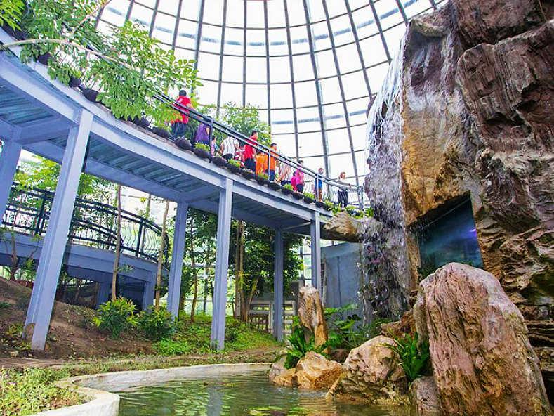 蝴蝶溫室花園