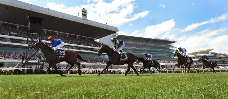 Cross Counter will bid to regain his Melbourne Cup crown later this year