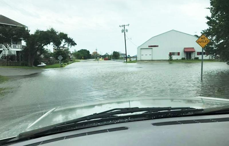 Tropical Storm Barry: Gator Spotted on Barry-Flooded Mississippi Street