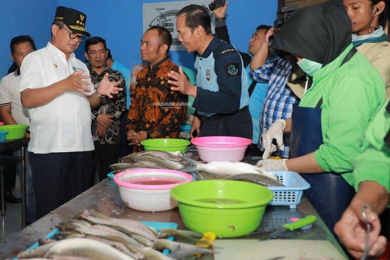 Pemprov Kaltara usulkan bangun gudang beku untuk perikanan