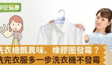 洗衣機飄異味、橡膠圈發霉?洗完衣服多一步洗衣機不發霉