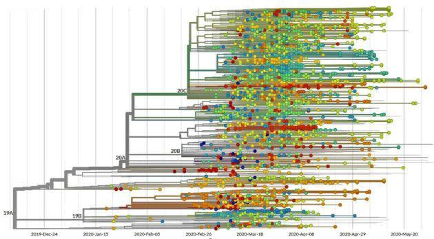 Evolution of coronavirus in U.S.