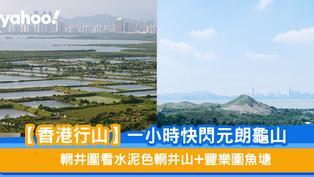 【香港行山】一小時快閃元朗龜山 輞井圍看水泥色輞井山+豐樂圍魚塘
