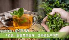 茶的個性四季皆異!究竟哪一個季節的茶最好喝呢?