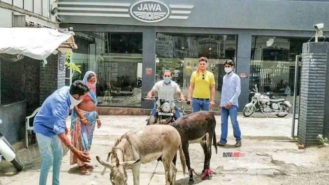 Diler Sepeda Motor Digeruduk Dua Ekor Keledai, Ada Masalah Apa?
