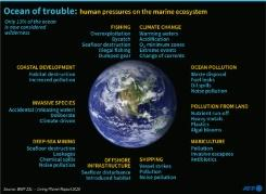 Penelitian Australia: 14 juta ton mikroplastik berada di dasar laut