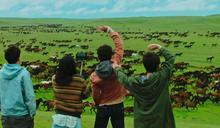 中國大陸推新疆歌舞片 靈感宣稱來自La La Land