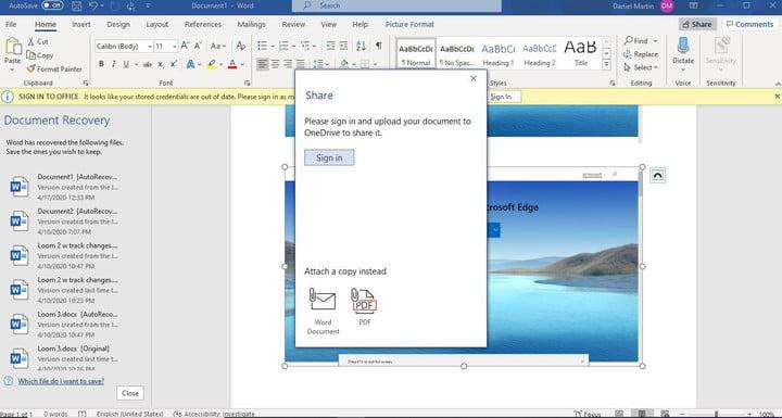 Image of Word Document Sharing Options