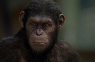 'Rise of the Planet of the Apes' Originally Had a Pretty Different Ending