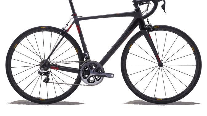 Polygon Bikes (www.polygonbikes.com)