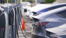 減碳與保育,竟在對立面!美國推廣電動車遇兩難:鋰礦開採危及特有種,做還是不做?