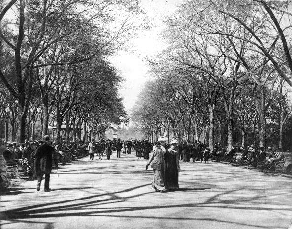 <p>Since the turn of the 20th century, New Yorkers and visitors alike have enjoyed strolling down The Mall in Central Park. </p>