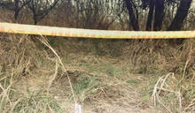 南投移工「公園玩空拍機」嚇傻 草叢竟有一具乾屍