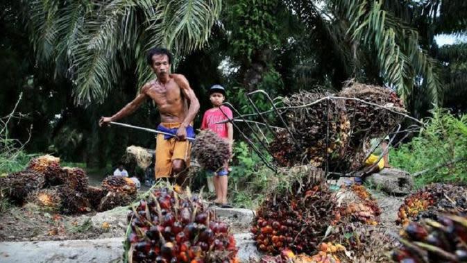 Industri perkebunan sawit di Jambi menginspirasi pembuatan sebuah film dokumenter berjudul The Green Lie. (Foto: Dok Humas Pemprov Jambi/B Santoso)
