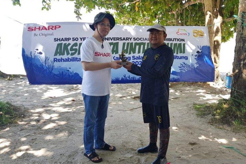 Sharp Indonesia rehabilitasi terumbu karang di Belitung