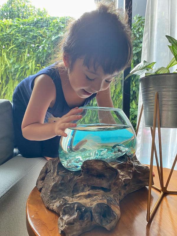 Tidak hanya Gisel, tapi juga anaknya Gempi. Anak Gisel dan Gading Marteen itu juga terlihat menyukai ikan yang memiliki banyak warna dan model ini. (Instagram/gisel_la)