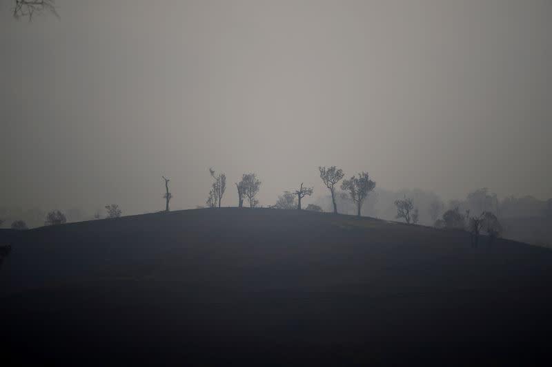 FILE PHOTO: Bushfires in Cobargo, Australia