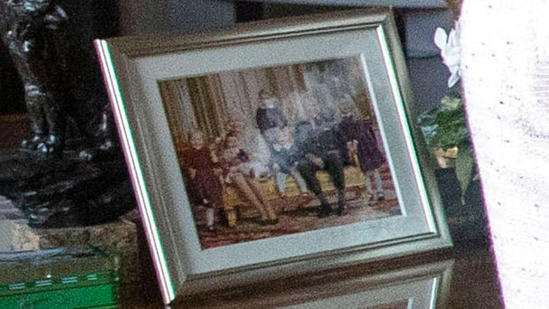 This portrait of the Queen and Prince Philip with their great-grandkids, Prince George, Princess Charlotte, Isla Phillips, Savannah Phillips, and Mia Tindall has never been seen before. Source: Getty