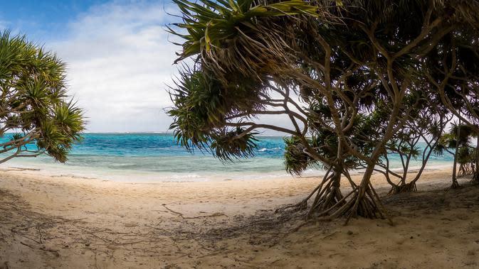Pemandangan di Vanuatu. Dok: Unsplash/Mariano Carpentier
