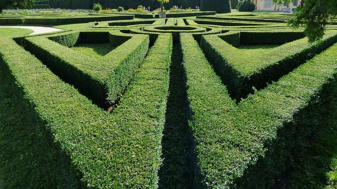 Ilustrasi Taman Labirin / Sumber: Pixabay