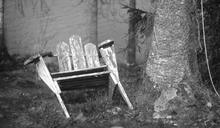 天外飛來木椅直接爆頭!她奇蹟救活「腦袋卻少半顆」…慘況曝