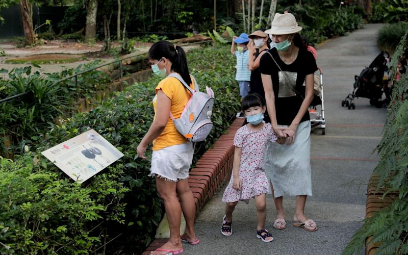 Visitors wear face masks as they walk past the common ostrich enclosure at Singapore Zoo at its reopening today, which involves strict contact tracing, disinfection protocols and attendance limits - Shutterstock