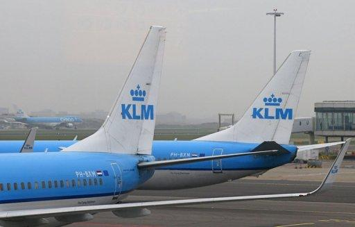 Tailwings of KLM aircraft are seen at the Amsterdam's Schipol international airport, on November 17, 2012