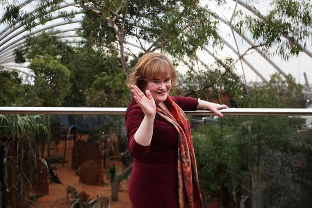 Susan Boyle Says She's Ready for Love