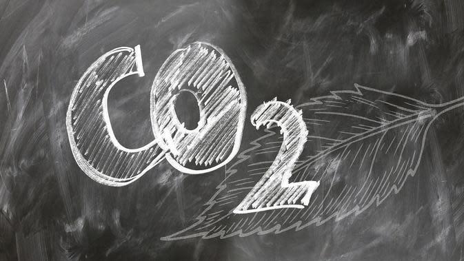 Membran untuk Ekstraksi Karbon Dioksida dari Udara