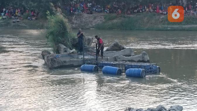 Atraksi Penyelamatan Buaya Berkalung Ban Jadi Tontonan Warga