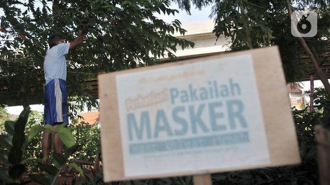 Pungki (53) merawat tanaman perkebunan di kolong Tol Becakayu, Kalimalang, Jakarta, Kamis (4/6/2020). Selain tanaman, kebun yang berada di pinggir Kalimalang ini dihiasi bangku santai dan pot-pot yang terbuat dari barang bekas. (merdeka.com/Iqbal S. Nugroho)