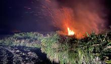墾丁風吹砂山坡灌木林火警(3) (圖)