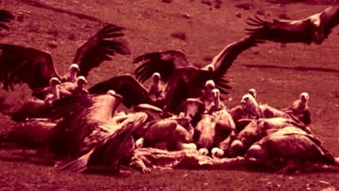 Bikin Merinding, Ritual Pemakaman Jenazah di Tibet