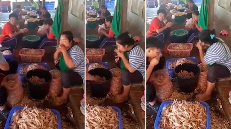 WATCH: Thai workers preparing chicken with their teeth